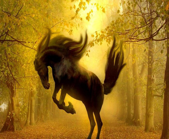 Horse on hind legs in golden forest